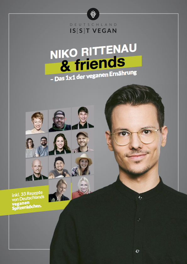 niko rittenau and friends cover